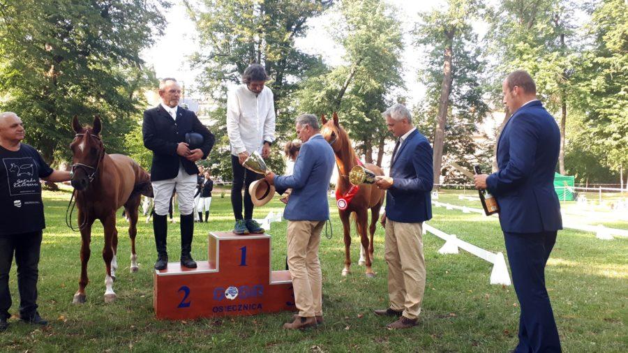 MPMK 2019 w sportowych rajdach konnych - dekoracja
