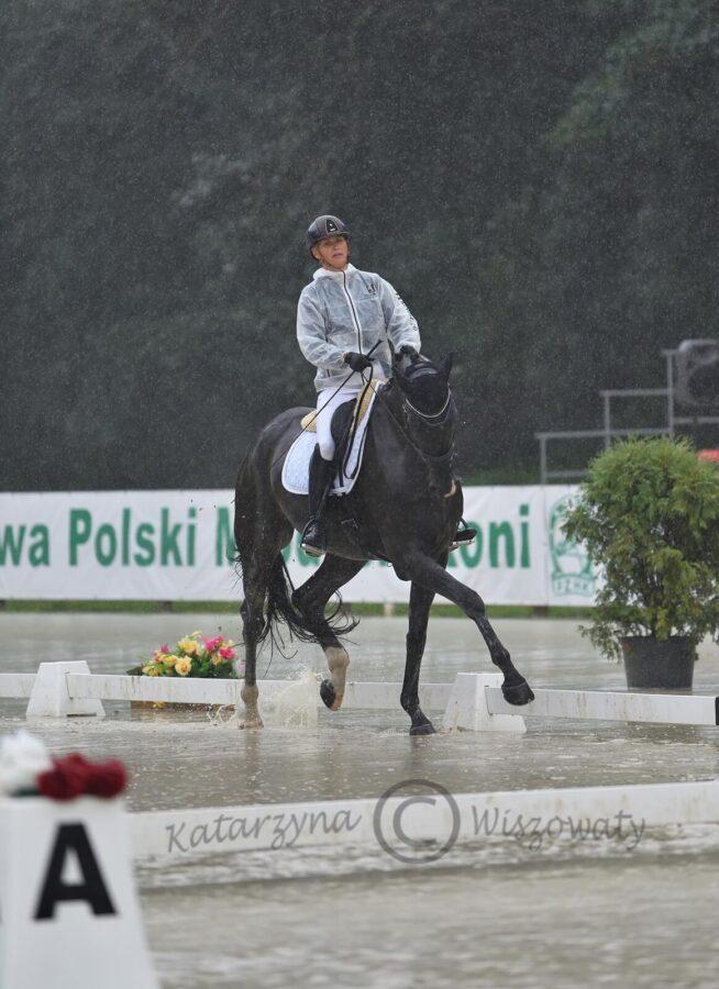 Zalgarii Royal DSP (Zalando old. x London Swing han.) - Agnieszka Wiśniewska
