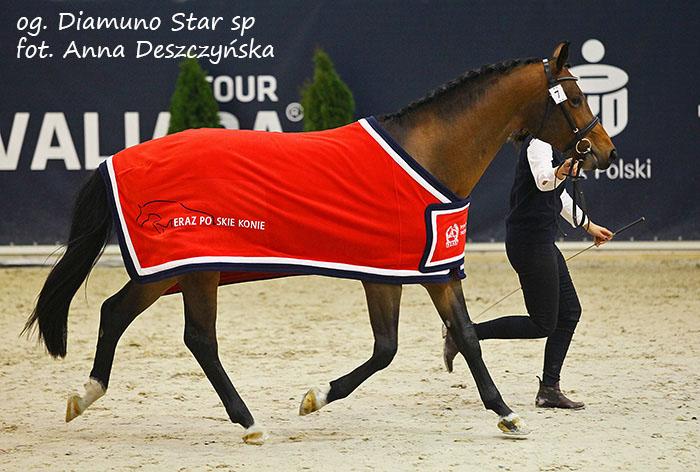 Diamuno Star