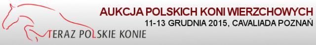 Aukcja_TPK-2015