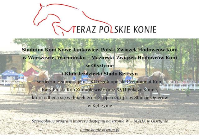 XII Ogólnopolski Czempionat Młodzieży Rasy Polski Koń Zimnokrwisty