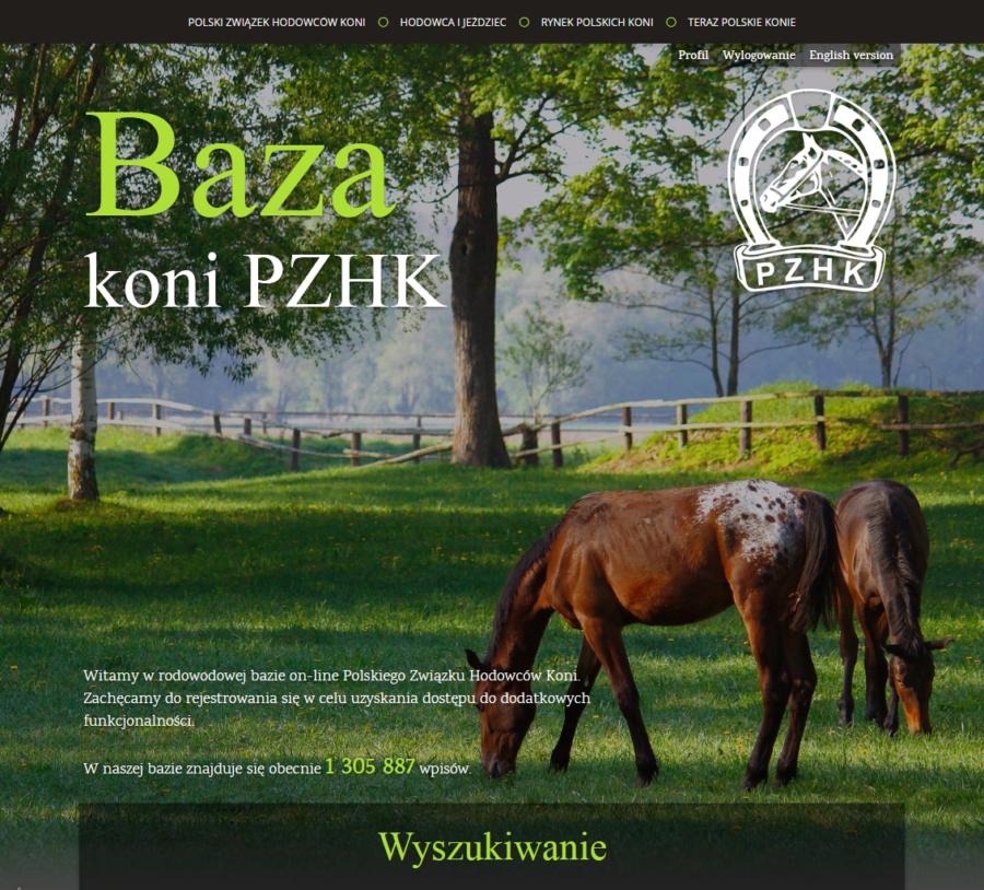 Baza koni - zrzut ekranu