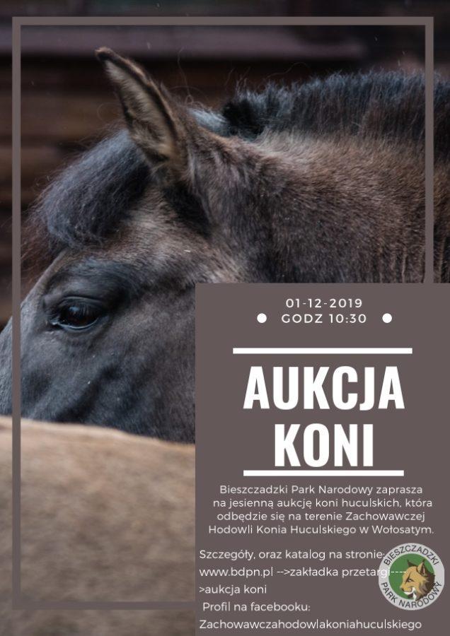 PLAKAT - Bieszczadzki Park Narodowy - aukcja koni 2019