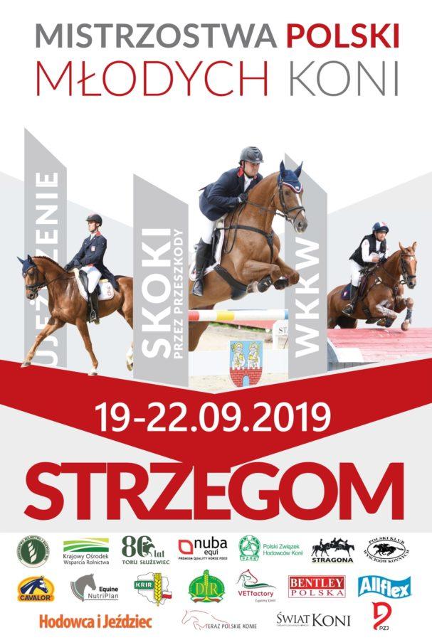 Plakat Mistrzostw Polski Młodych Koni, Strzegom 2019
