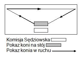 Schemat pokazu wringu
