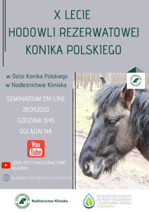 10-lecie Hodowli Rezerwatowej Konika Polskiego wNadleśnictwie Kliniska