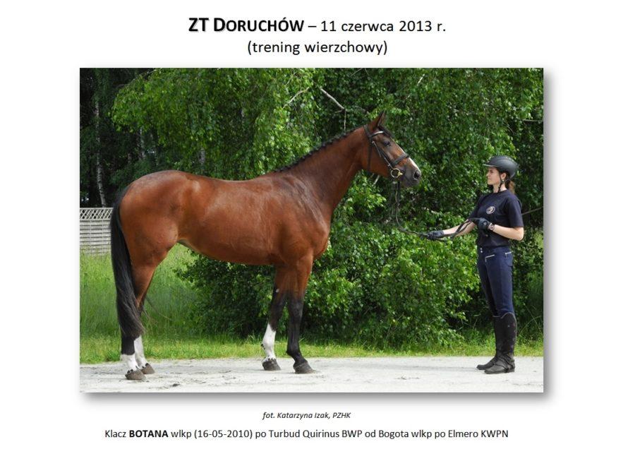 ZT DORUCHÓW (trening wierzchowy) – 11 czerwca 2013 r.