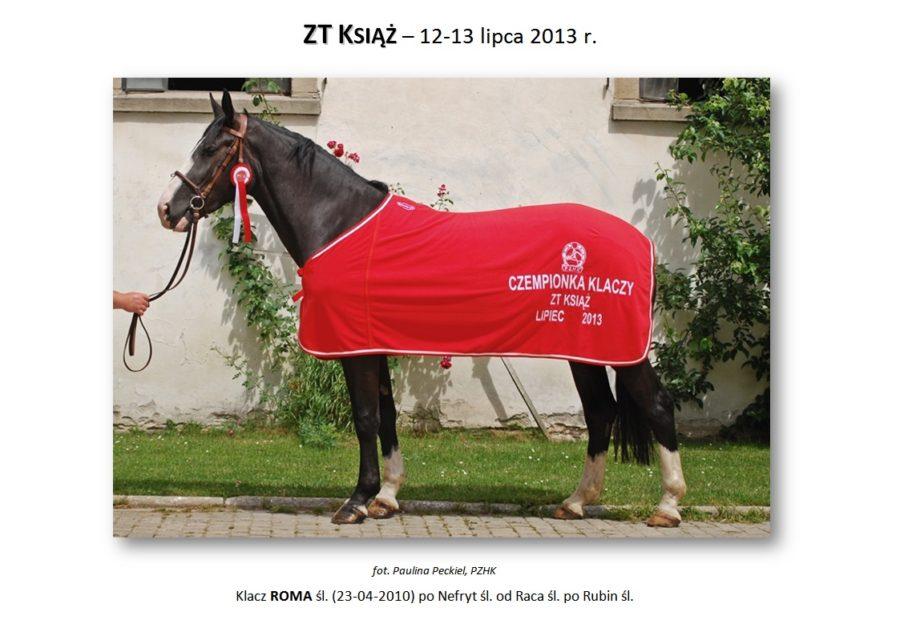 ZT KSIĄŻ (trening zaprzęgowy) – 12-13 lipca 2013 r.